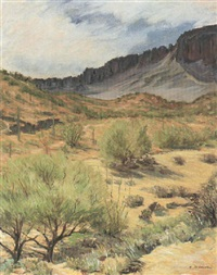 wickenburg landscape by ettore simoni