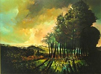 landscape with trees and shadows by horacio blas mazza