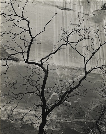 glen canyon from fifteen photographs by brett weston