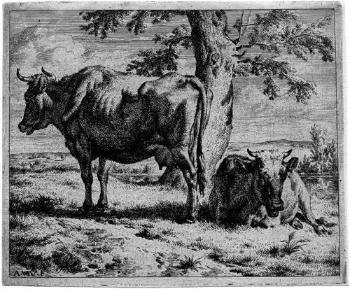 grasende kuh mit zwei schafen (+ zwei kühe unter einem baum; 2 works) by adriaen van de velde