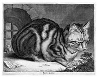 die große katze, mit einer maus zur linken by cornelis visscher