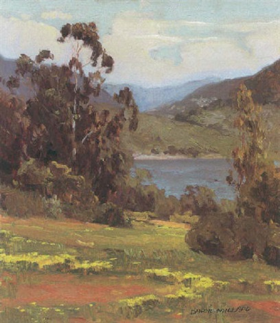 springtime lake hodges by daryl millard