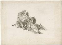 löwe und tiger by johann nepomuk rauch
