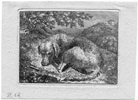 schlafender hund by christoph nathe