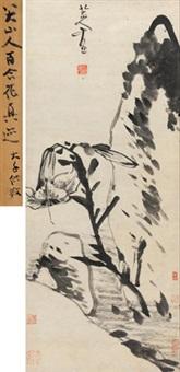 百合拳石 by bada shanren