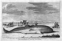 der gestrandete wal zwischen zandvoort und wijk op zee (after jacobus luberti augustini) by hendricus spilman