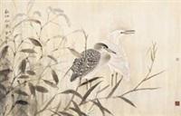 秋江丽影 by xu xiaobin