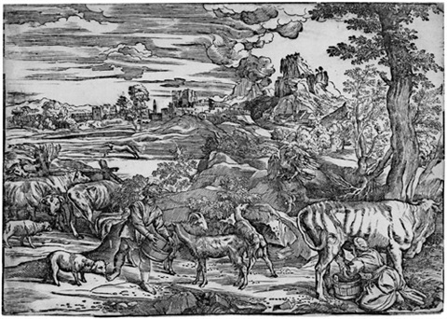 die landschaft mit der kuhmelkerin after tizian by niccolo boldrini