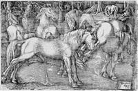 die sechs pferde by hans baldung grien