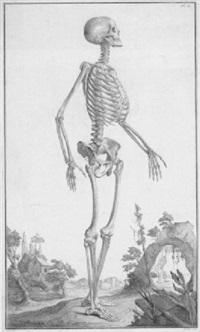 ein skelett vor einer landschaftskulisse by claude-donat jardinier