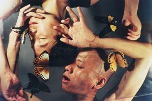 梦蝶no1 butterfly by ma han