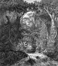 urwald auf ceylon by hermann reichsfreiherr von königsbrunn