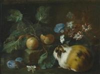 stilleben mit blumen, früchten und einem meerschweinchen by franz werner von tamm