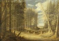 waldlandschaft mit umgestürzten bäumen und wanderern by gillis (egidius i) peeters