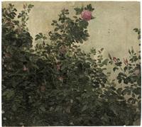 buschrosen by karl gussow