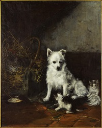 scene with dog and cats by camilla zach-dorn
