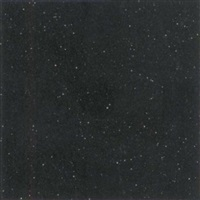 untitled (black glitter) by mary corse