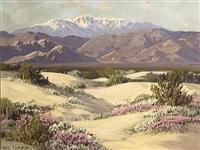 desert wild flowers, palm springs, california by carl sammons