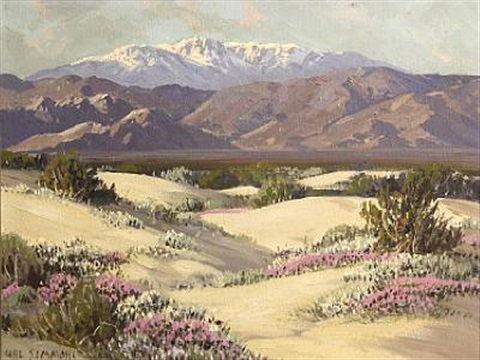 desert wild flowers palm springs california by carl sammons