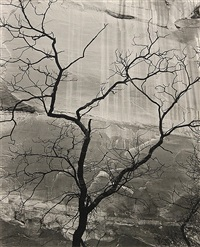glen canyon (from fifteen photographs) by brett weston