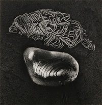 pepe and shell by jerry uelsmann