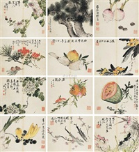 花卉册 (album w/12 works) by ma anji