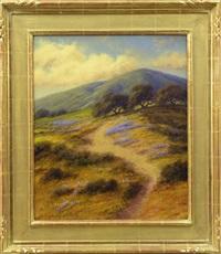 lupine field by mark geller