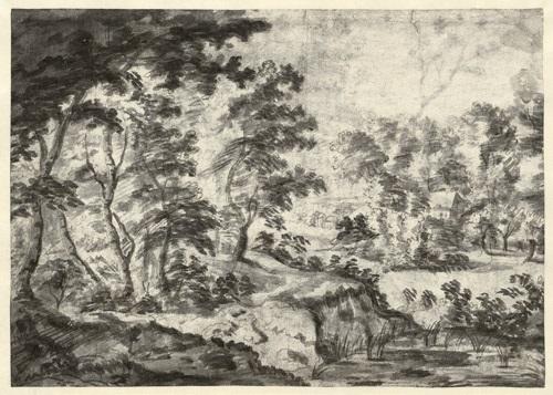 weite baumlandschaft mit kleinem dorf (+ hügelige baumlandschaft mit dorf, verso) by jacques d' arthois