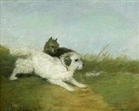 zwei kleine terrier auf einer wiese by edwin armfield