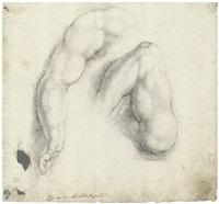 zwei armstudien by ambrogio giovanni figino