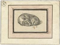 schlafender hund by gottfried stadler