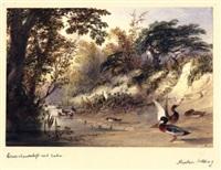 wassertümpel mit gänsen und enten (+ bauenhaus an einem see; 2 works) by newton (smith limbird) fielding