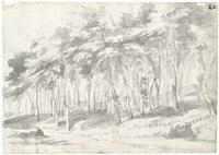 blick auf rom mit der kuppel des petersdomes und der engelsburg (recto); eine waldige landschaft (verso) by johann philipp lemke