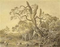 waldstück mit ententeich und knorrigen eichenbäumen by philipp heinrich dunker