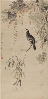 新柳鸜鹆 (mynah) by xue chenglin