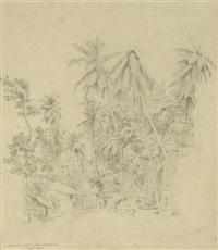 das dorf galle im urwald von ceylon by hermann reichsfreiherr von königsbrunn