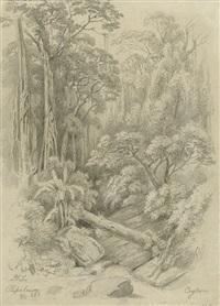 am ufer des kaluganga auf ceylon (+ im urwald bei pupalawa auf ceylon; 2 works) by hermann reichsfreiherr von königsbrunn