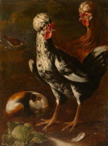 hühner und meerschwein by giovanni agostino abate cassana