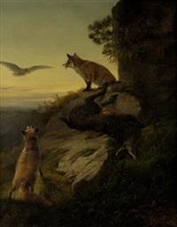 zwei füchse auf einem felsvorsprung verteidigen ihre beute gegen anfliegende raubvögel by ludwig sellmayr