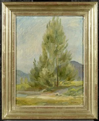 baum (study) by robert amrein