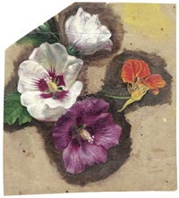 studienblatt mit hibiskus und kapuzinerkresse (+ studie einer rose; 2 works) by emile-charles labbé