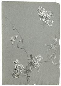 studienblatt mit pfingstrosen (+ studie einer pfingstrose; 2 works) by emile-charles labbé