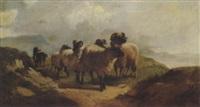 schaafsherde mit hund by henry goirch