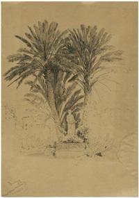 der palmenpark der villa massimo in rom by josef selleny