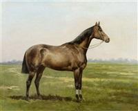 pferd auf der wiese by thaddaus von ajdukiewicz