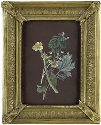 wiesenblumen (study) by johann-heinrich wüst
