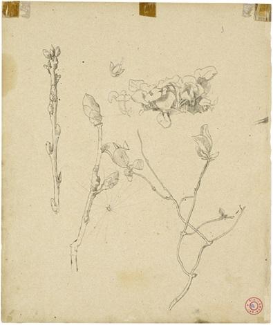 magnolienblüten und huflattich porträt einer jungen frau im profil nach links verso by hans thoma