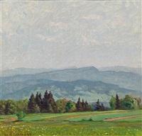 flower meadow in the black forest by hermann dischler