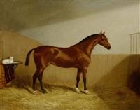 braunes pferd mit katze in einem stall by martin theodore ward