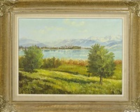 ausblick auf rapperswil by jacques f. fuchs